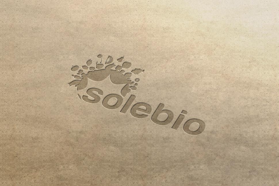 Love-my-name-solebio-logo-charte-graphique-3