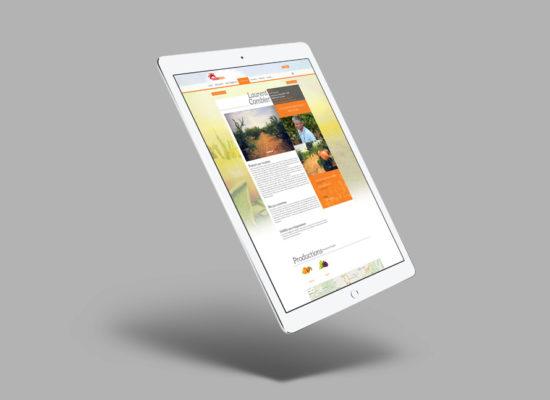 agence-branding-solebio-site-web-4