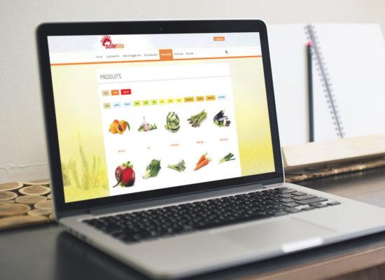 agence-branding-solebio-site-web-5